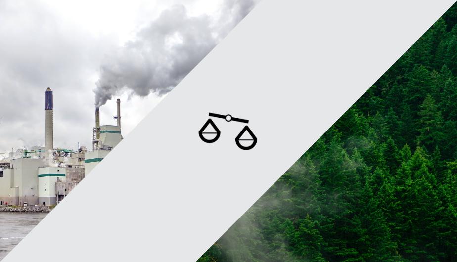 CSC : La taxe carbone est légale